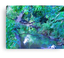 """""""Manoa Valley Creek"""" by Carter L. Shepard Canvas Print"""