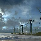 Wind Harvest by Igor Zenin
