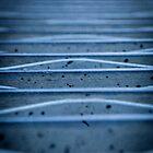 Blue metal..... by Nina  Matthews Photography
