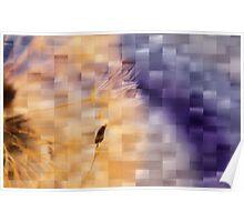 Dandelion Magic Poster