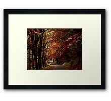 Road Of Joy ~ Fall Colors ~ Framed Print
