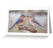 Beautiful Bluebirds Greeting Card