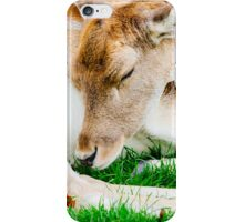 Sleeping Doe iPhone Case/Skin