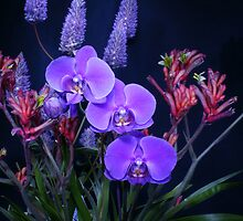 Beautiful Flowers Calendar 1 by Gotcha29