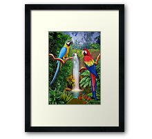 MACAW TROPICAL PARROTS Framed Print