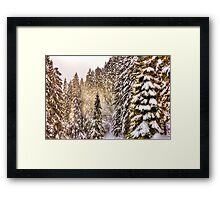 Winter Landscape - Snow Forest Framed Print