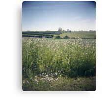 Holga Field Canvas Print