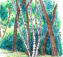 Birch in the Back, 2013 by RobHogan
