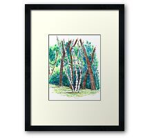 Birch in the Back, 2013 Framed Print