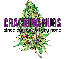 Cracking Nugs Photographic Print