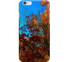 Dutch Autumn  iPhone Case/Skin