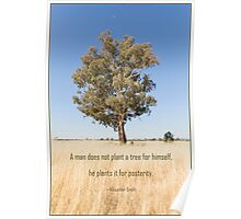 A Tree for Posterity Poster