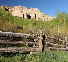Colorado Log Fence by Eric Glaser