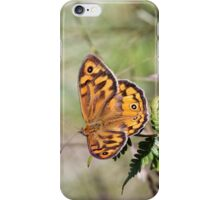 Common Brown Butterfly iPhone Case/Skin