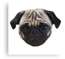 Cute Caesar the Pug Face by AiReal Apparel Canvas Print