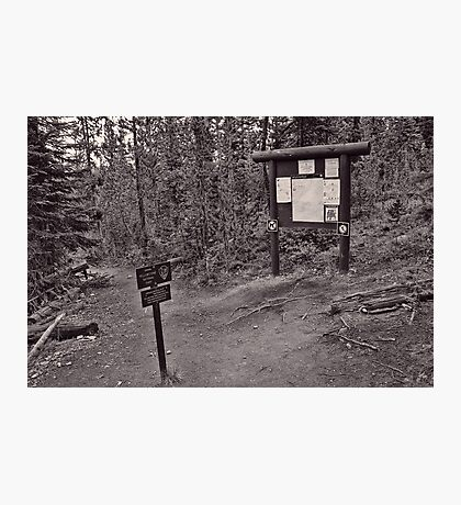 Entering Yellowstone Back-Country  Photographic Print
