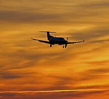 Airplane And Sunset by Cynthia48