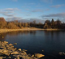 Early Morning Breeze - Lake Ontario, Toronto, Canada by Georgia Mizuleva