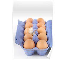 Open egg carton Poster