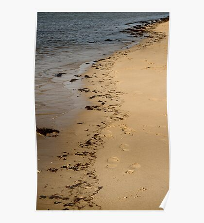 Tide Lines Poster