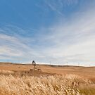 Windmills - South Australia by pennyswork