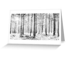Mystical Forest Trees in Black and White Greeting Card