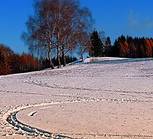 Hiking through winter wonderland III | landscape photography by Patrick Jobst