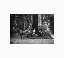 Carriage in the Hollow Tree Unisex T-Shirt