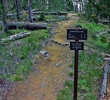 Terraced Falls Trail & Trail-sign by Brenton Cooper