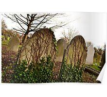 Ivy Eaten Gravestones Poster