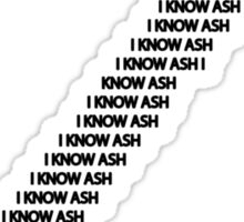 I KNOW ASH!!1! Sticker