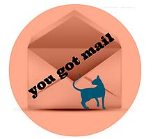 you got mail Photographic Print