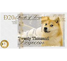 Twenty Thousand Dogecoin Photographic Print