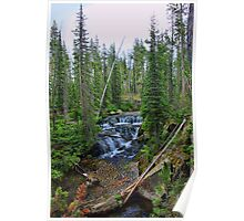 Cascade Creek VI - Color Poster
