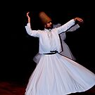 Whirling Dervish by Bob Culshaw