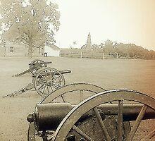 Battlefield at Manassass by wickedblondeone