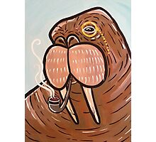 Sophisticated Walrus Photographic Print