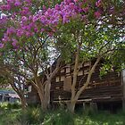 Magnolia Cottage by Liz Worth