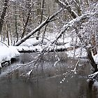 Wadlin Road Winter Stream by MaryinMaine