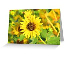 """""""Sunflower"""" by Carter L. Shepard Greeting Card"""