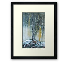 Cement Woodlands Framed Print