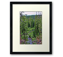 Cascade Creeks Meets Falls River Framed Print