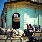 Granada Horse & Cart by Beclund