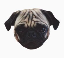 Cute Caesar the Pug Face by AiReal Apparel Baby Tee