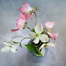 Pink & White Dogwood by LouiseK