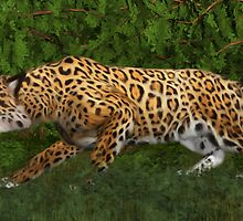 Jaguar Stalking Prey by Walter Colvin
