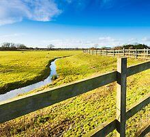 Upton Fields by Ralph Goldsmith
