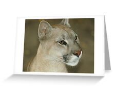 11114 puma l Greeting Card