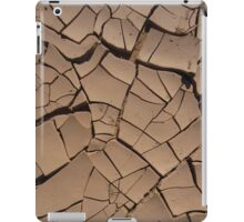 Rainless iPad Case/Skin
