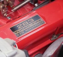 283 CI  220 HP POWER PACK SMALL BLOCK CHEVY by PHOTOSBYPHIL